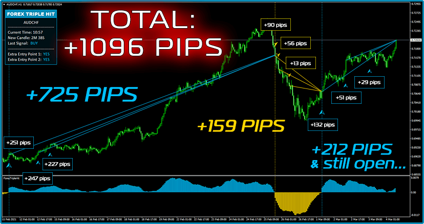Some Fresh Trades: February, 17 – March, 1 NZDCHF, M30: +876 Pips Profit!